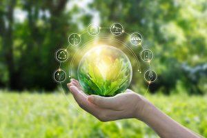 Protecția mediului înconjurător - Ce se poate face pentru un viitor mai bun