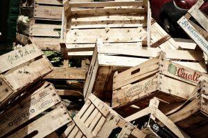 Deşeurile biodegradabile şi problema resturilor alimentare - Stratos.ro
